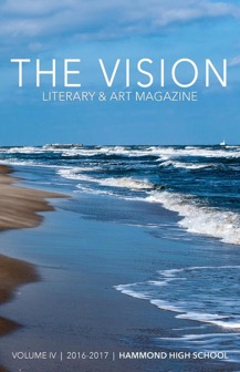 The Vision.jpg